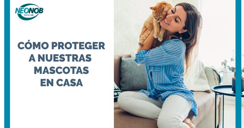 ¿Cómo proteger a las mascotas en casa?